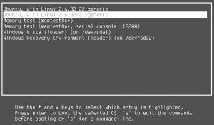 Grub Menu screenshot showing Windows and Gnu/Linux entries